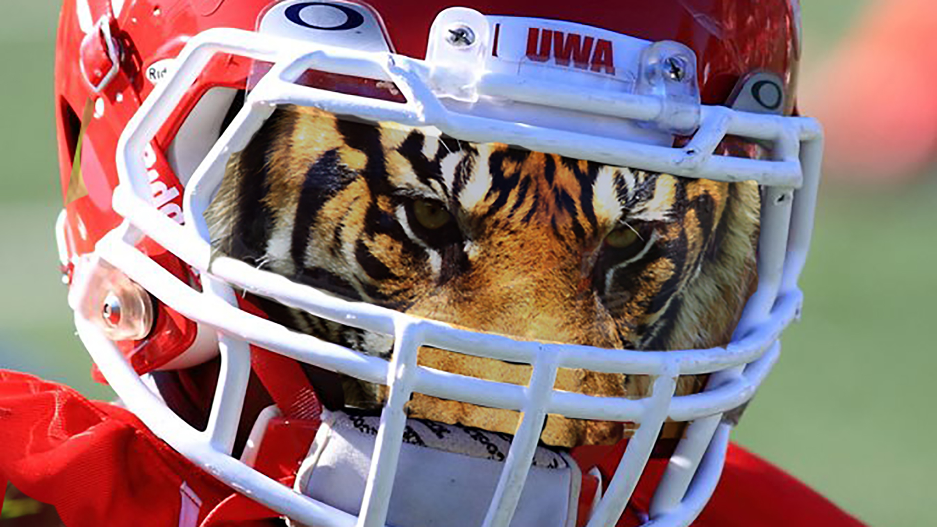 Toys Collected Libby Honored at UWA Spring Football Game